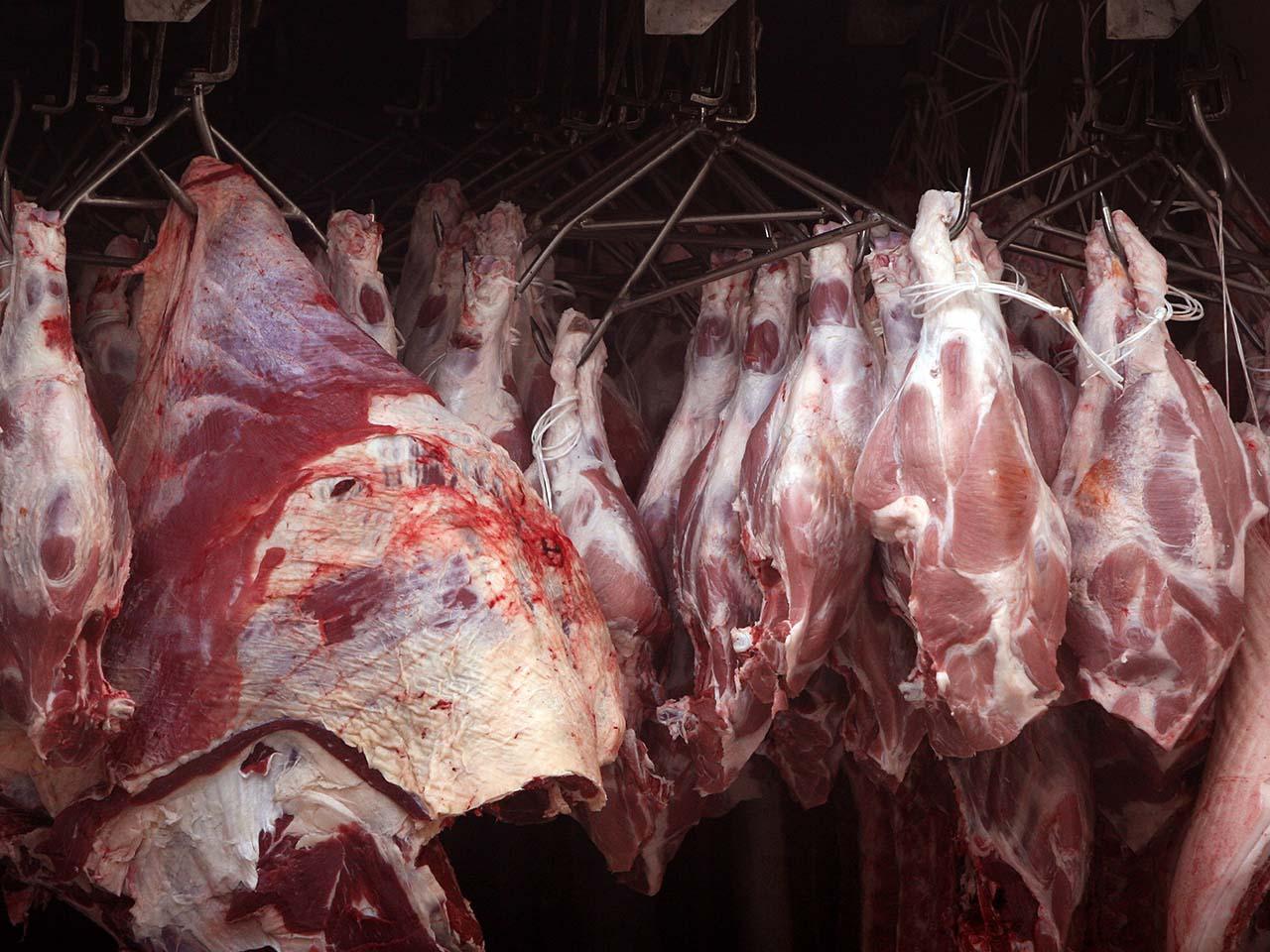 Armazenamento de carnes em açougues e frigoríficos