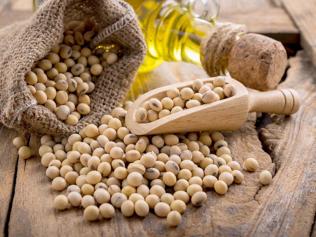 Maior oferta prevista para os EUA limita valorização da soja no BR