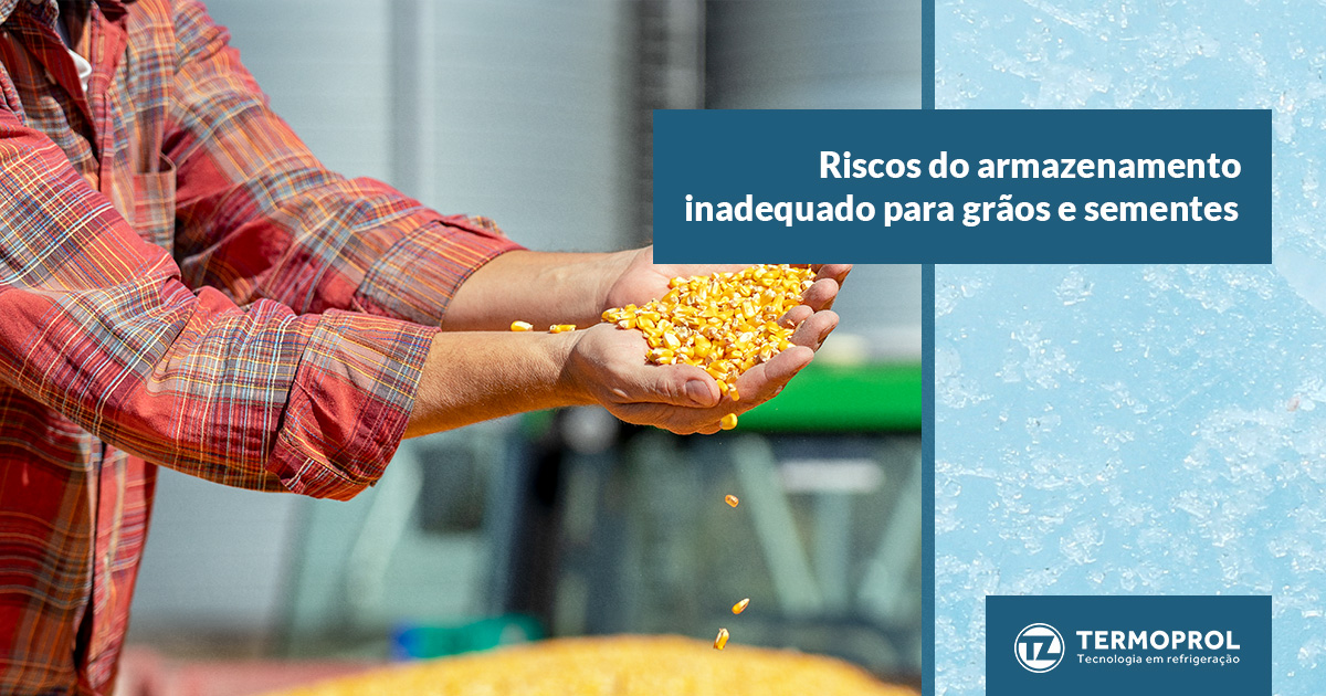 Riscos do armazenamento inadequado para grãos e sementes