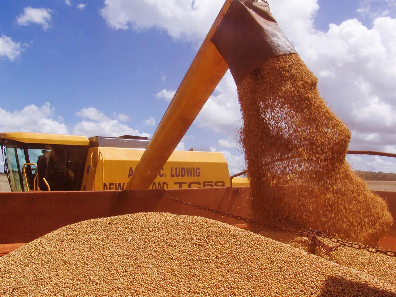 Valor bruto da produção de 2017 é estimado em R$ 536 bilhões