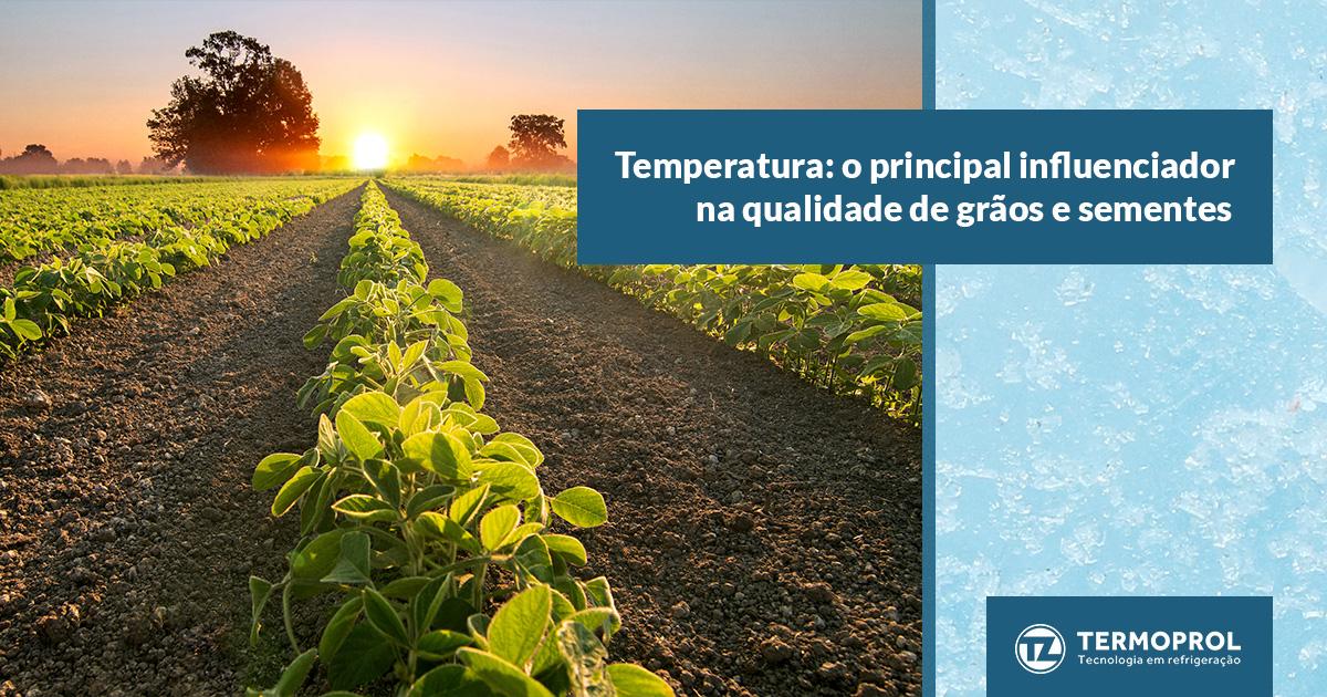 Temperatura: o principal influenciador na qualidade de grãos e sementes