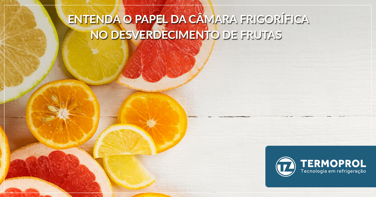 Entenda o papel da câmara frigorífica no desverdecimento de frutas