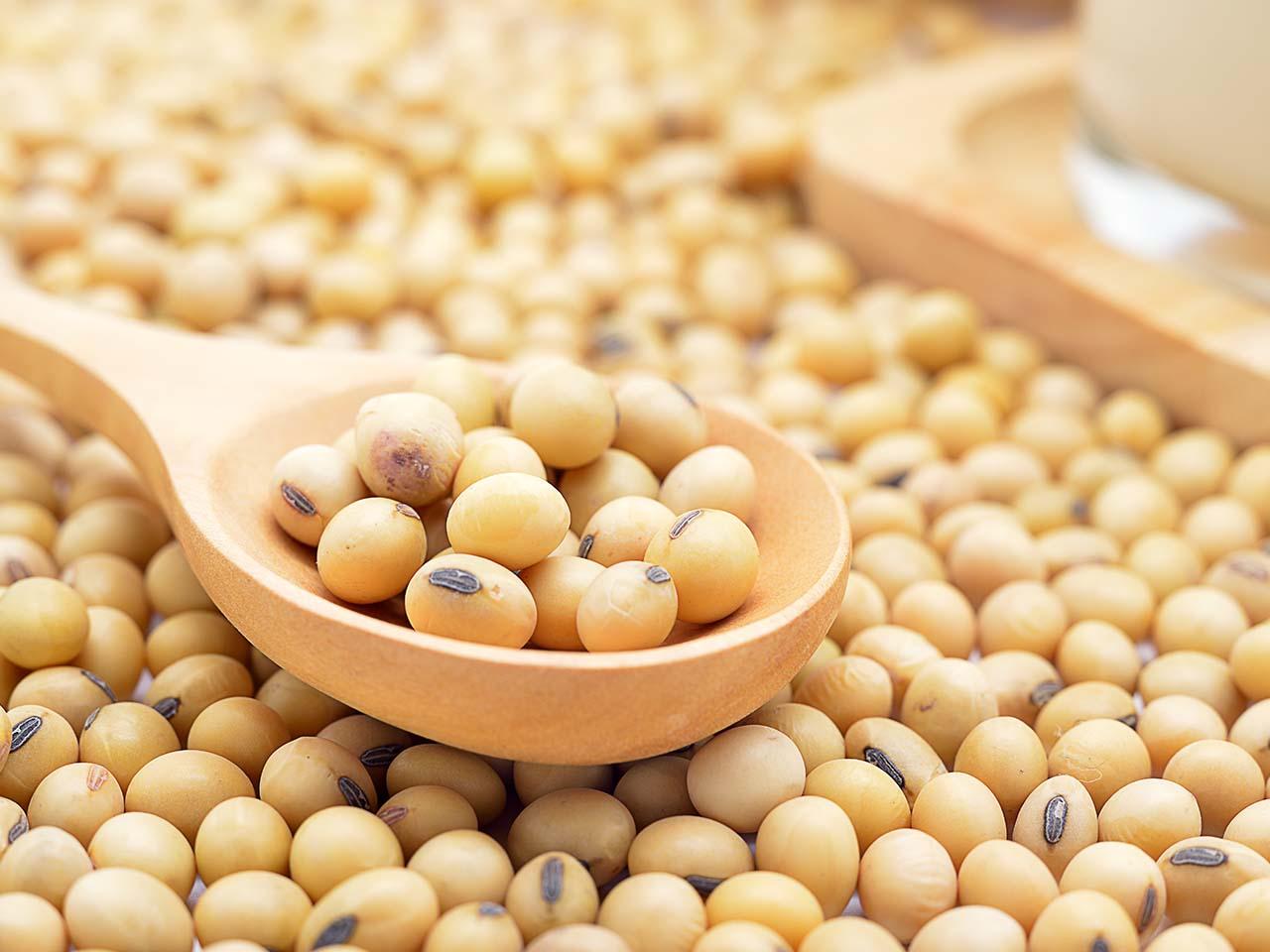 Cuidados na secagem e armazenagem de grãos de soja