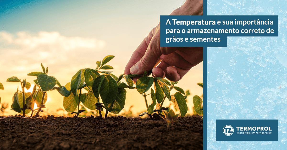 Câmaras de grãos e sementes: A importância no controle de temperatura e umidade relativa do ar