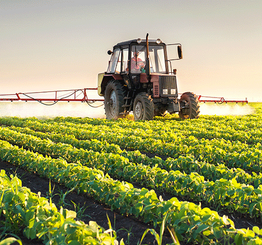 Governo diminui burocracia para incentivar agricultura no Nordeste